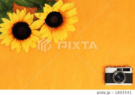 夏のヒマワリとレトロカメラ 1803541