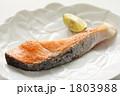 塩鮭 魚料理 さけの写真 1803988