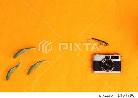 レトロカメラと渓流散策 1804596