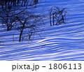 流れる木陰Ⅱ 1806113