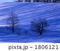 冬の並木Ⅱ 1806121
