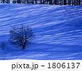 冬の光Ⅱ 1806137