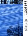 冬の木蔭Ⅱ 1806166