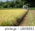 稲刈り 1809891