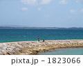 海岸 親子 海の写真 1823066