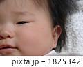 ボディパーツ 赤ちゃん 人物の写真 1825342