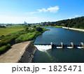 多摩川。 1825471