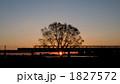 落日 鉄橋 夕焼けの写真 1827572