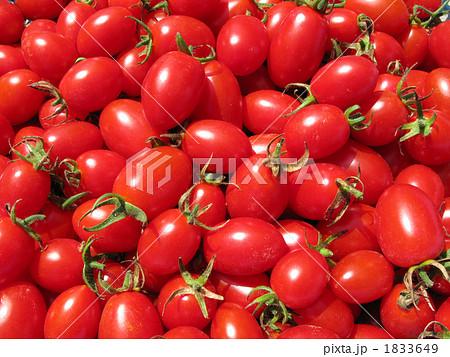 茨城県の農家で木熟させた甘いミニトマトをアップで撮影しました。 1833649