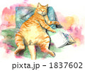 水彩 ペット 猫のイラスト 1837602