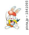 usagi_5.201010 1841093
