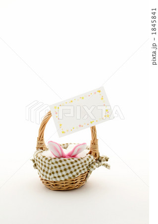 メッセージカードとウサギ ホワイト 1845841
