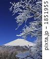 樹氷 雪景色 雪山の写真 1851955