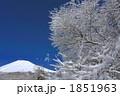 樹氷 雪景色 雪山の写真 1851963