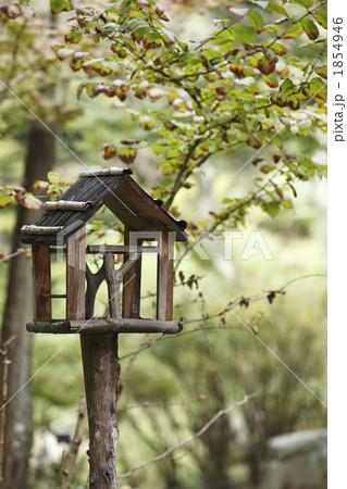 小鳥の餌場の写真素材 [1854946]...