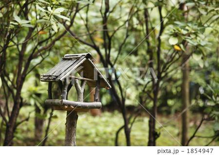 小鳥の餌場の写真素材 [1854947]...