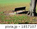 秋の公園 1857107