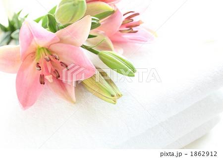 白いタオルとピンクの百合 1862912
