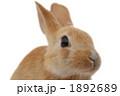 1892689