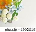 ブルースターのアレンジ(アップ) 1902819