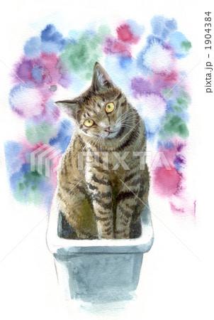プランター猫 1904384