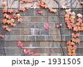 壁 壁面 外壁の写真 1931505