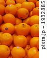 1932885