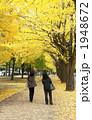 銀杏並木 1948672