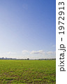芝生 空 青空の写真 1972913