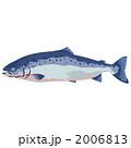 魚介類 さけ ベクターのイラスト 2006813