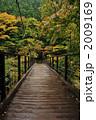 秋の鳩ノ巣渓谷 2009169