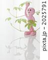 雑貨 緑の葉 クラフトの写真 2025791