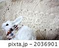 オシャレうさぎ 2036901