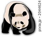 大型動物 ジャイアントパンダ 動物のイラスト 2044624