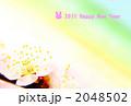 梅とグラデーション 2048502