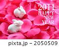 白うさぎと花弁◆年賀状2 2050509