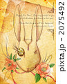 椿とウサギ 2075492