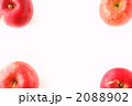 リンゴのフレーム 2088902