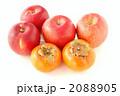 リンゴと柿 2088905