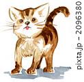 アビシニアン 仔猫 水彩のイラスト 2096380