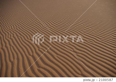 サハラ砂漠の風紋 2100587