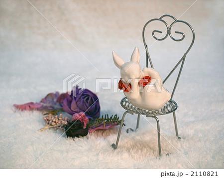 ポプリとウサギの写真素材 [2110821] - PIXTA