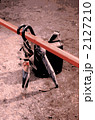 ランドセルと傘 2127210