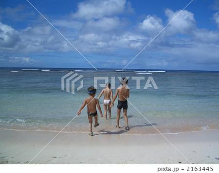 海 裸子供 2163445