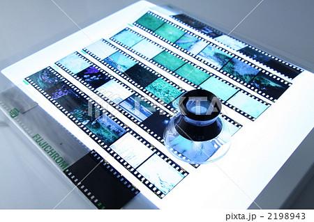 リバーサルフィルムをライトボックスで見る 2198943