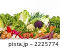 野菜集合 冬野菜 野菜の写真 2225774