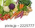 野菜集合 冬野菜 野菜の写真 2225777