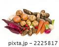 根菜類 野菜集合 冬野菜の写真 2225817