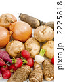 根菜類 野菜集合 冬野菜の写真 2225818