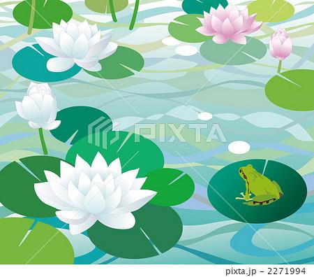 睡蓮 花 水面のイラスト素材 2271994 Pixta